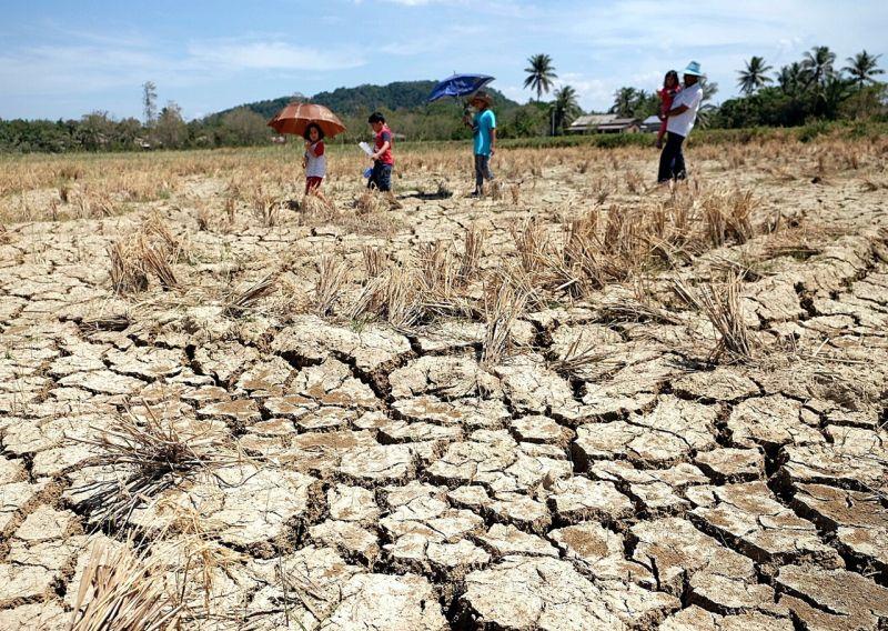 "BeED | ""Climate Change in Malaysia"" - Statistics | beedtheworld"